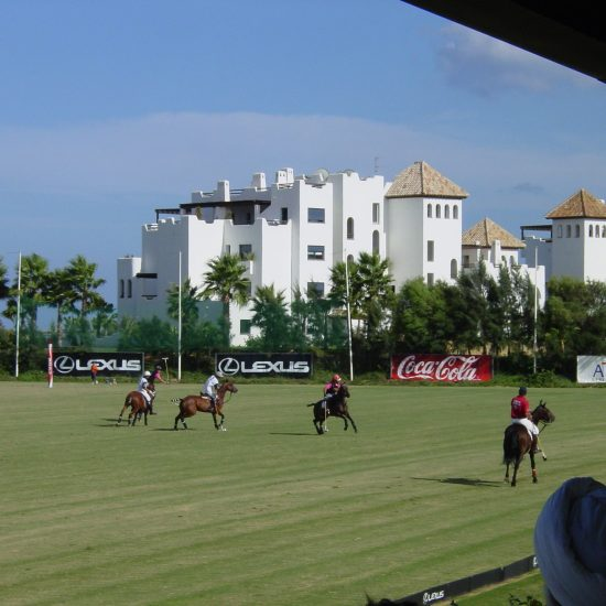Ayala Polo Club