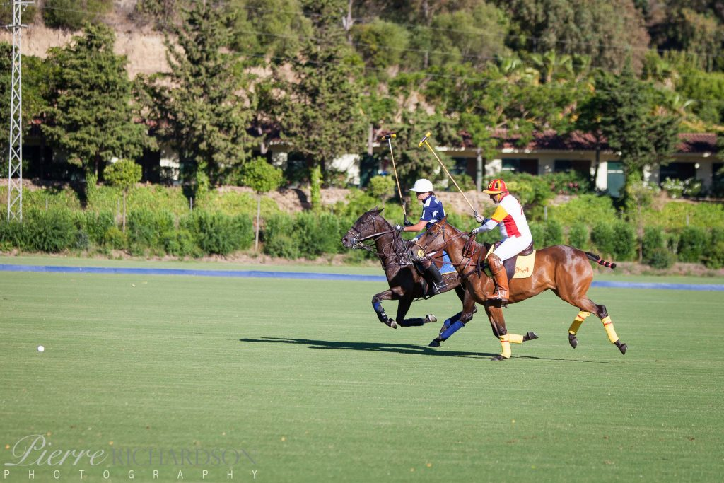 Polo in Sotogrande Guide