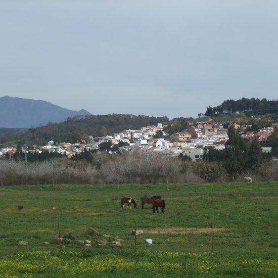 San Enrique de Guadiaro
